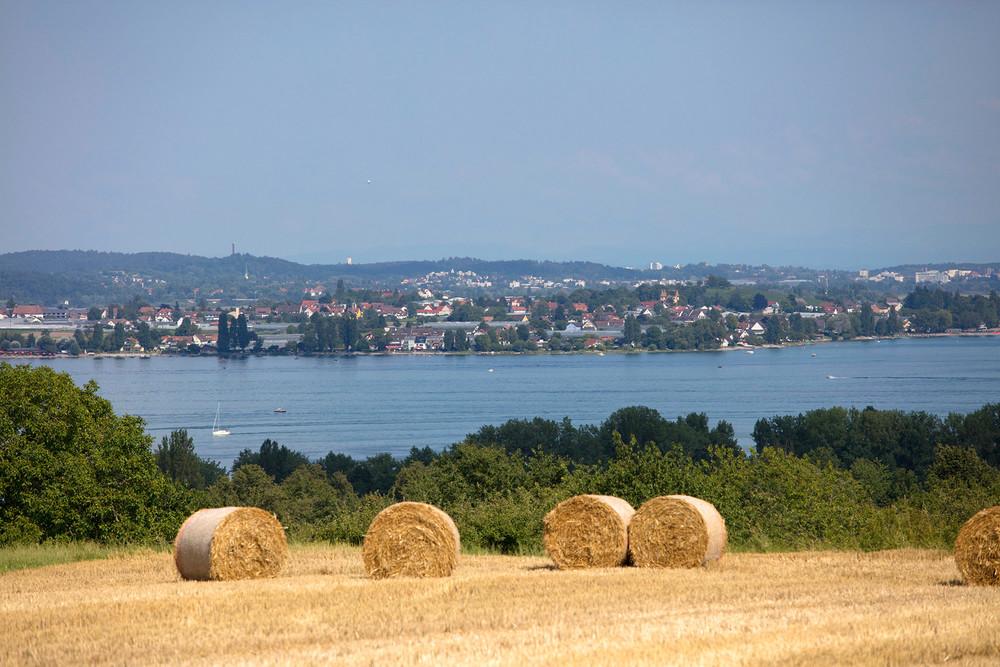 Blick vom Wasserturm Horn auf die Reichenau