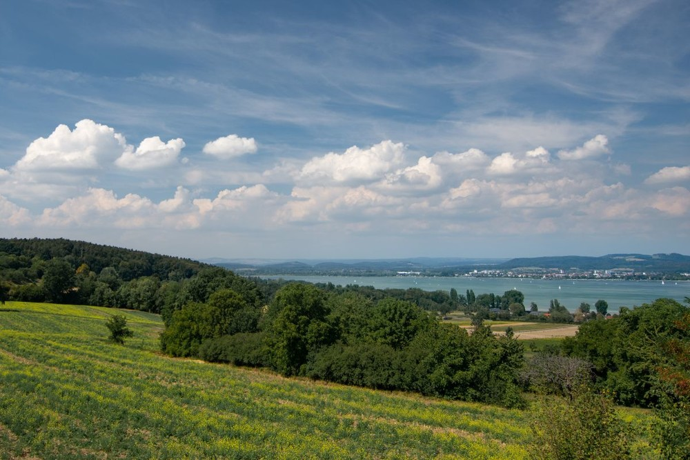 Blick über die Höri-Landschaft