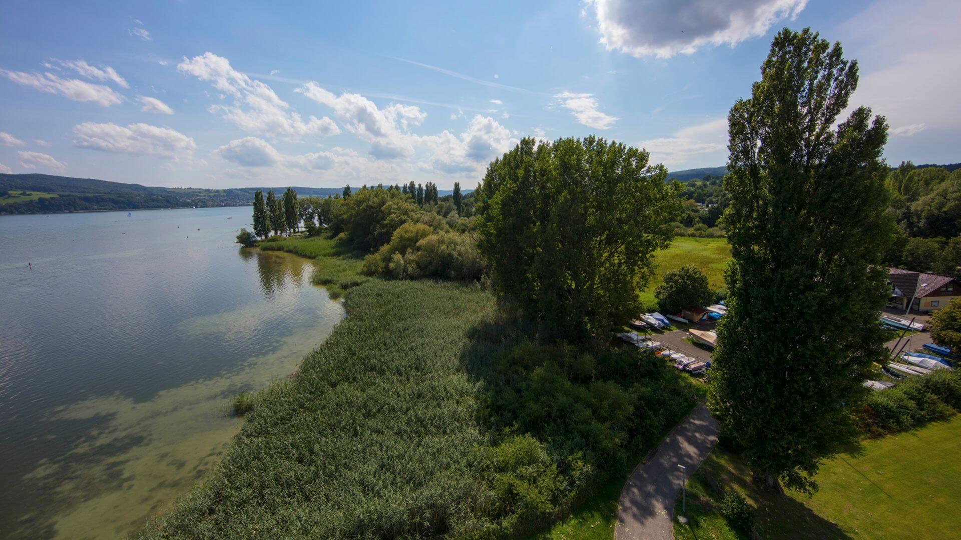 Ufer Gaienhofen