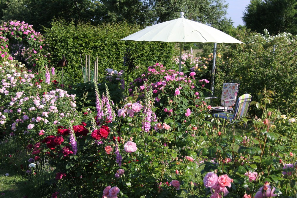 Garten Kämmerer